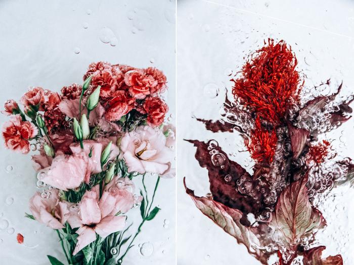 Кислород. Цветочные мотивы. Автор фото: Lisa Sorgini.