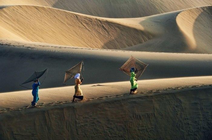Жаркое солнце пустыни. Автор: Ly Hoang Long.
