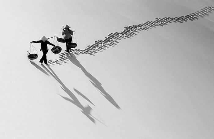 Транспортировка груза в пустыне. Автор: Ly Hoang Long.