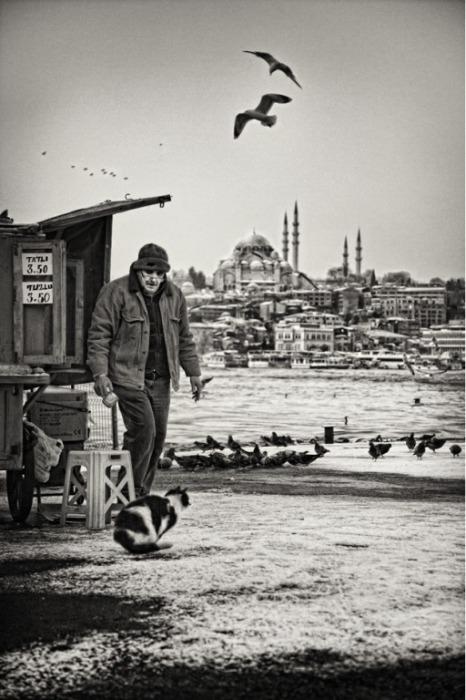 Человек и кошка от Mustafa Seven.