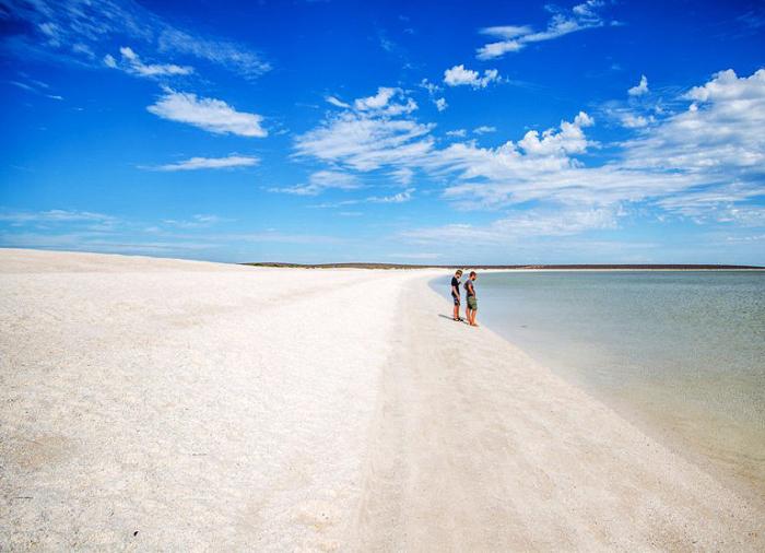 Залив Шарк-Бэй, Западная Австралия.