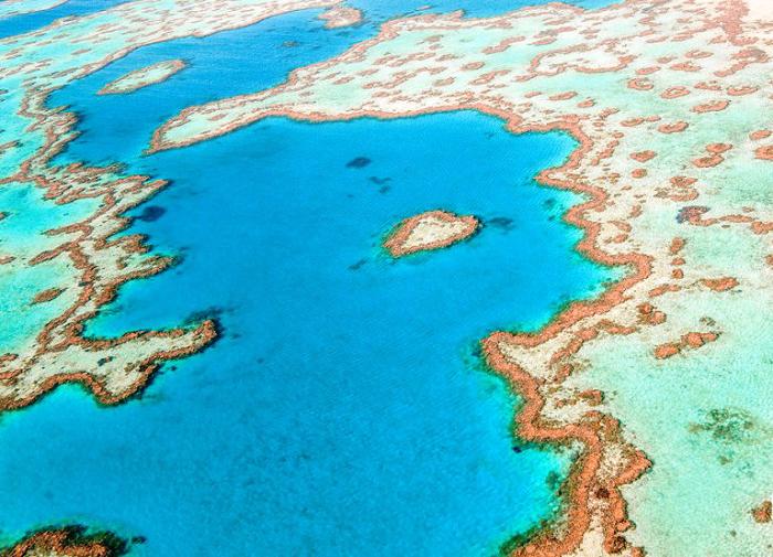 Большой Барьерный Риф, Квинсленд.