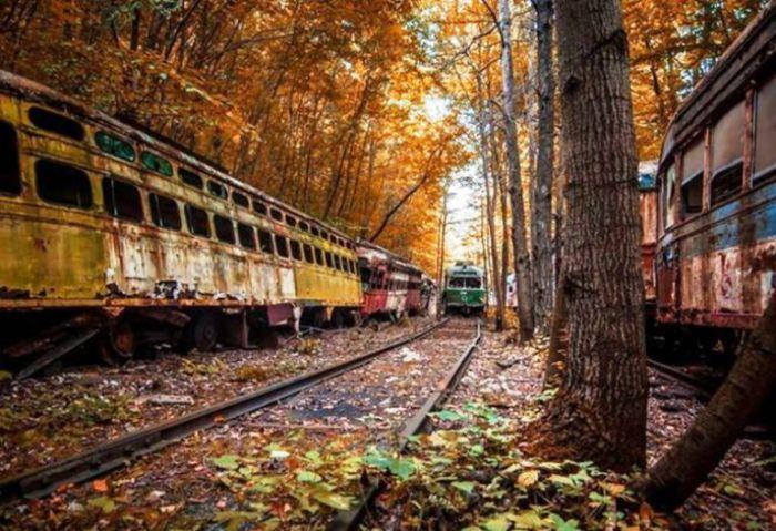 Кладбище старых трамваев. Штат Пенсильвания, США.