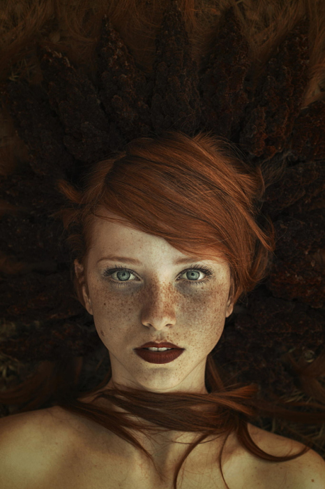 Рыжая королева. Автор фото: Maja Topcagic.