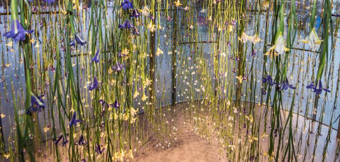Цветочные инсталляции Рэбекки Луизы Лоу.