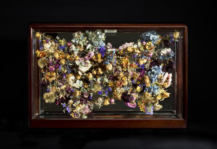 Необычные цветочные картины. Автор: Rebecca Louise Law.
