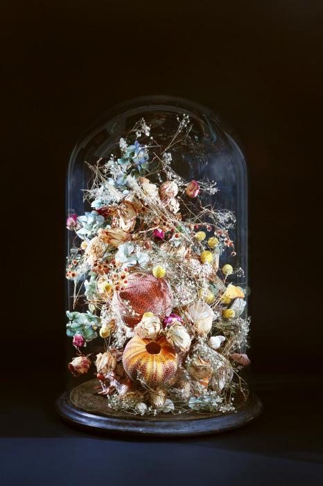 Цветы под стеклянным колпаком. Автор: Rebecca Louise Law.