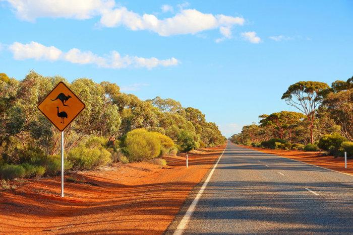 Квинсленд ассоциируется у путешественников с наиболее известными достопримечательностями континента.
