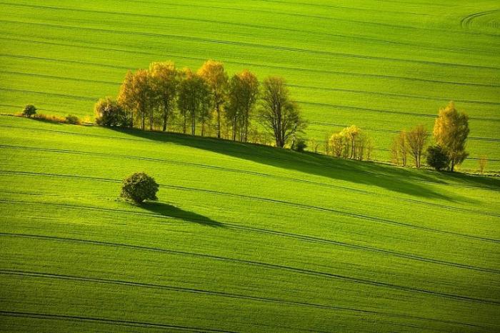 Зеленые равнины. Швейцария.