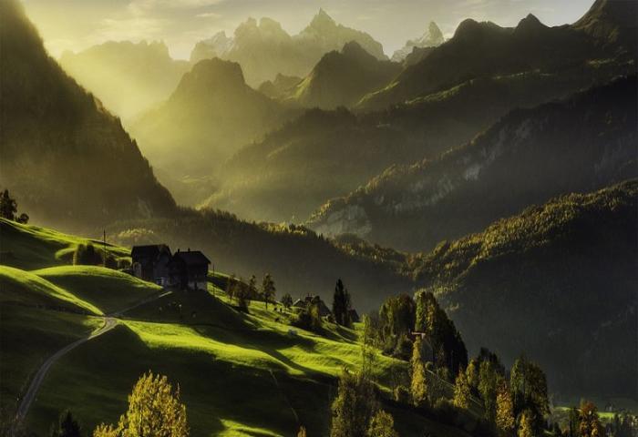 Изумрудные леса. Швейцария.