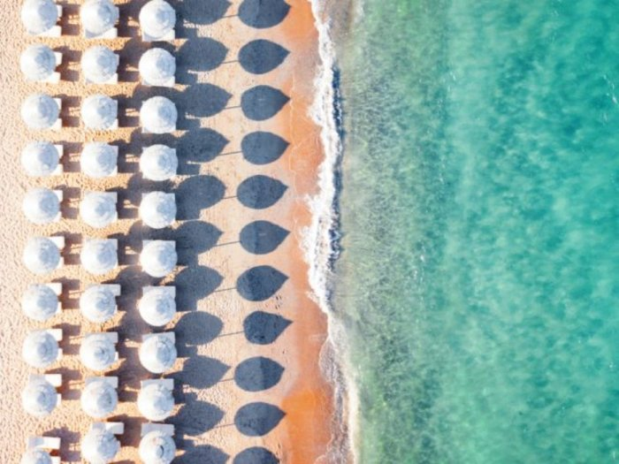 А сколько бы вы провели дней на одном из этих пляжных стульев?