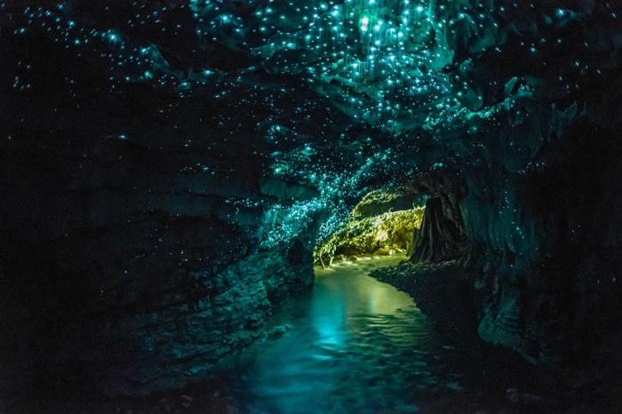 Пещеры светлячков, Вайтомо, Новая Зеландия.