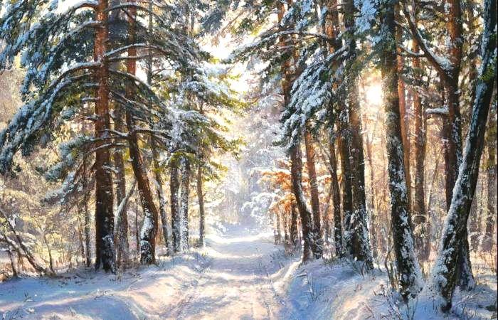 Утро в зимнем лесу. Автор: Виктор Юшкевич.