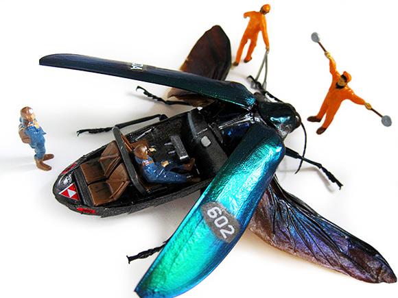 Micromachina и мёртвые жуки, таксидермист против экспериментов с насекомыми