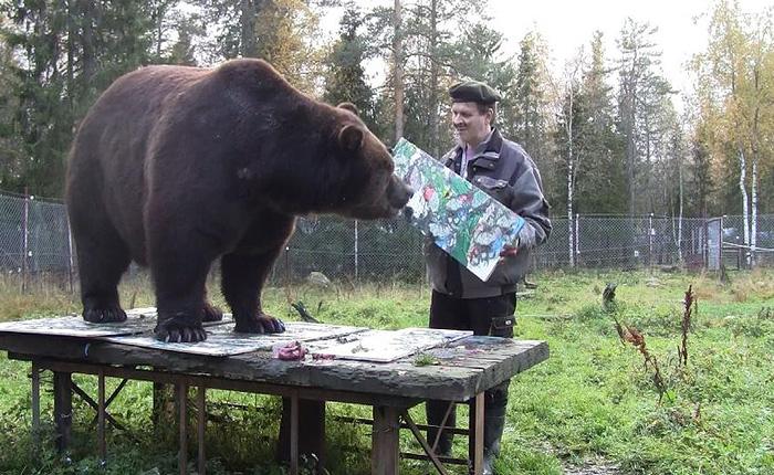 Восходящая звезда абстрактной живописи - медведь Juuso.