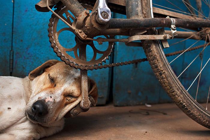 Фотографии Maciej Dakowicz. Варанаси, Индия