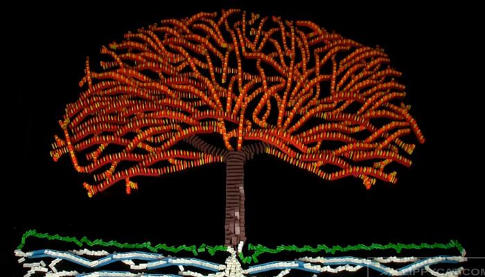 Дерево из 5000 фишек домино.