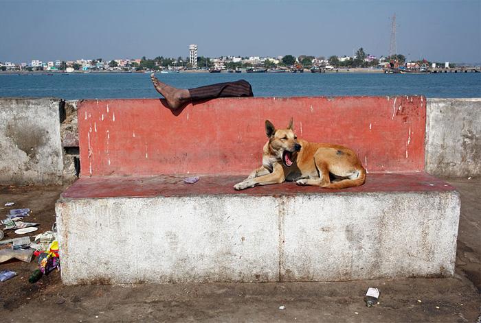 Диу, Индия в фотографиях Maciej Dakowicz