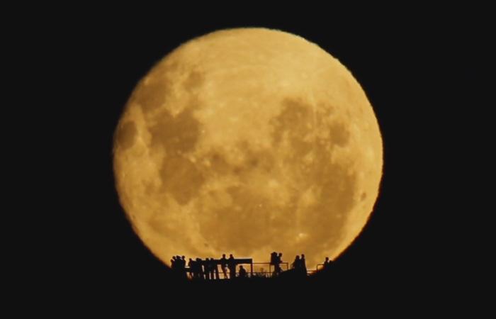 Силуэты на фоне огромной Луны.