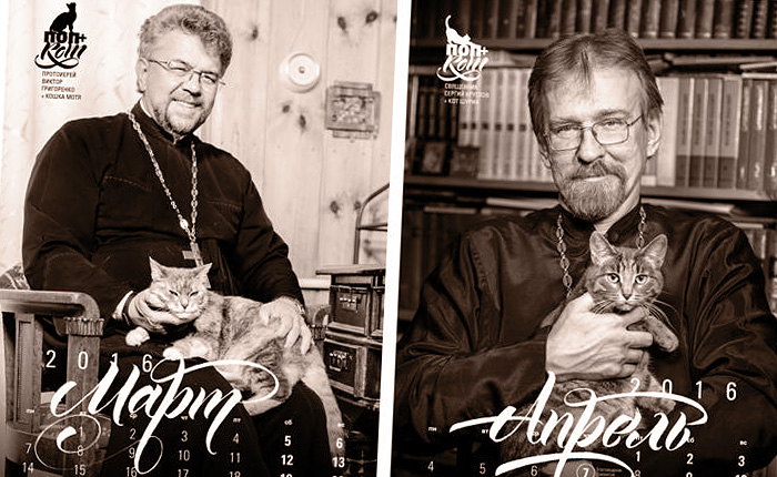 «Поп+кот»: календарь на 2016 год.