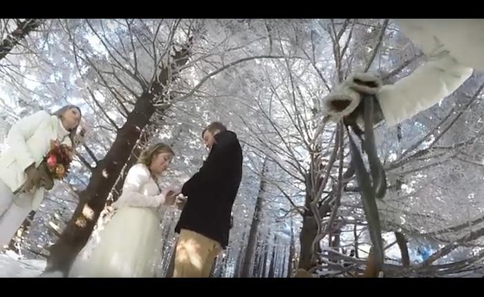 Свадебная съемка с собачьего ракурса.