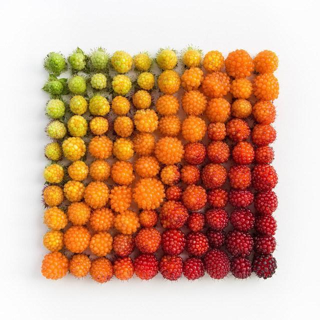 Причудливые композиции из разноцветных предметов.