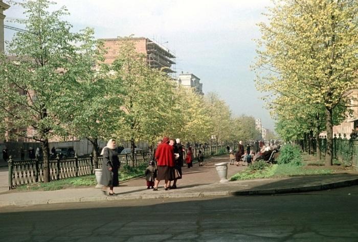 Отдыхающие прогуливаются по скверу на улице Ленина.