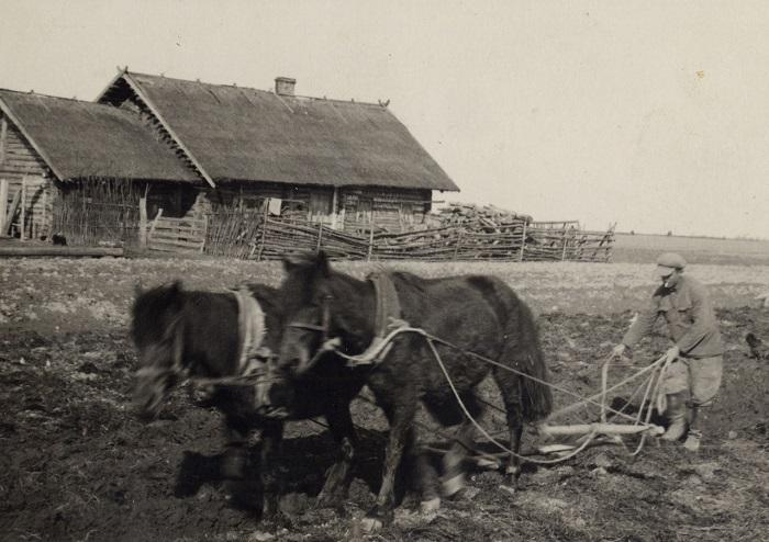 Хутор, освоение земли, 1936 год.