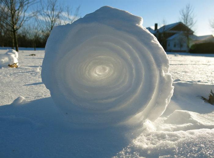 Пушистый рулон катится по снежному полю как перекати-поле. Автор фотографии: Miranda Granche.
