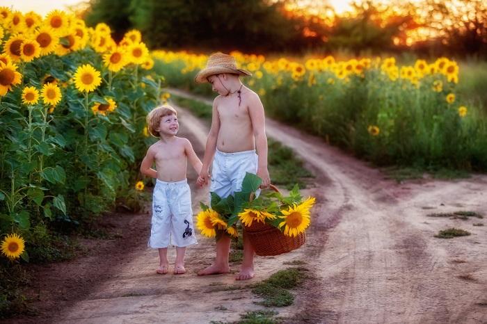 Два брата идут вдоль проселочной дороги, по краям которой растут желтые подсолнухи. Автор фотографии: Екатерина Савёлова.