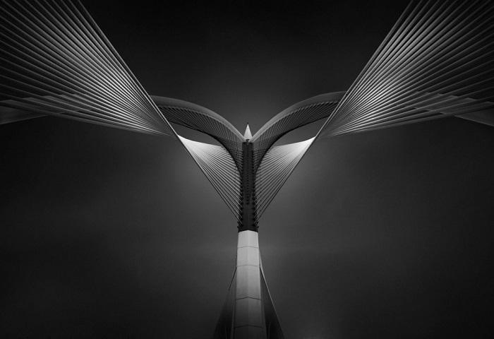 Первым в категории «Архитектура: Мосты / Профессионал» стал Ахмед Табет (Ahmed Thabet) из Египта.