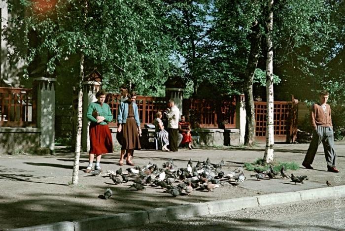 Прохожие на улице города, стая голубей и один хитрый воробей.