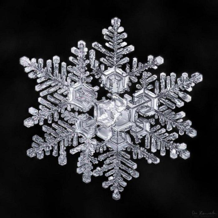 Дон Комаречка доказал, что в природе не существует двух абсолютно одинаковых снежинок.