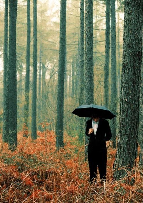 Один в осеннем лесу.