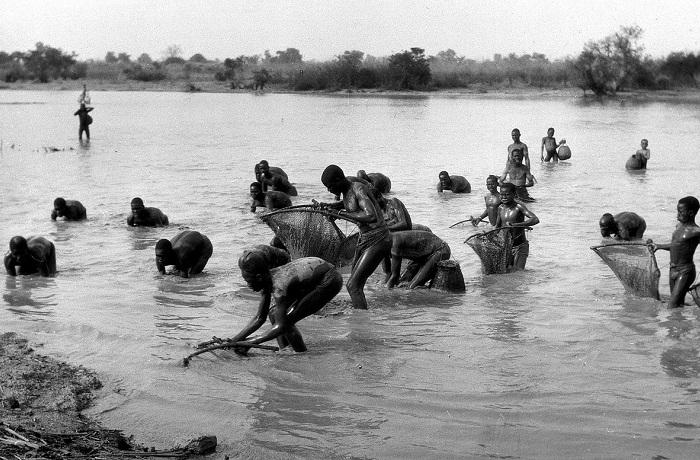 Жители Уагадугу ловят рыбу практически руками.