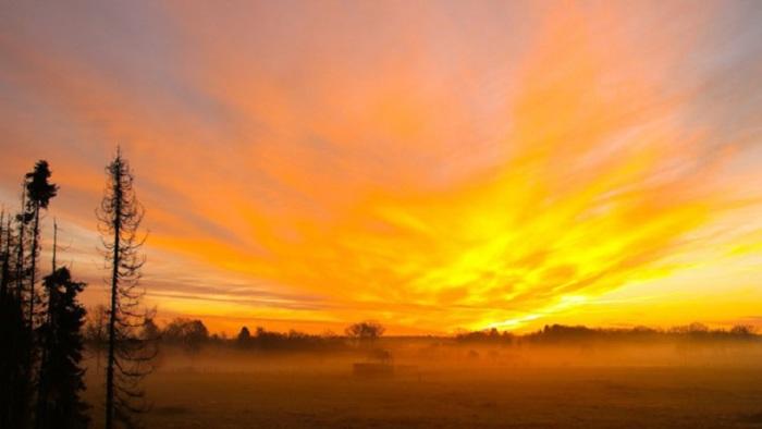 Весеннее пробуждение природы. Фотограф - Eskelsen.
