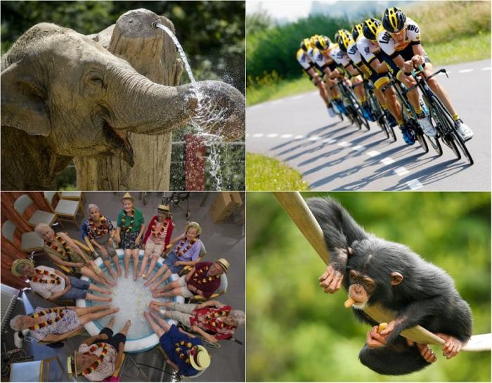 Впечатляющие фотографии из разных уголков мира.