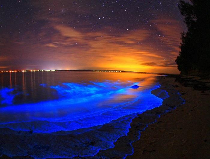 Озера Джипсленд – это комплекс озер, болот и лагун на востоке штата Виктория, площадью около 600 квадратных километров.