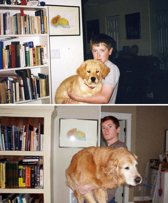 Вес щеночек за 10 лет прибавил хорошо.
