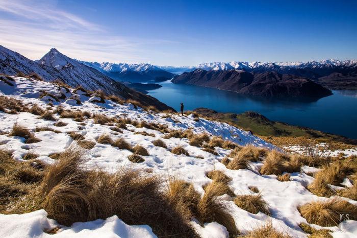 Растительность, засыпанная снегом, колышется над темно-синем озером.