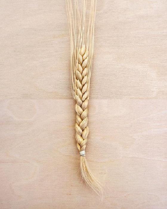 Вот откуда берутся светлые волосы.