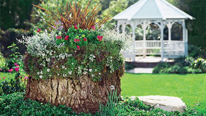 Озеленение и благоустройство сада своими руками.
