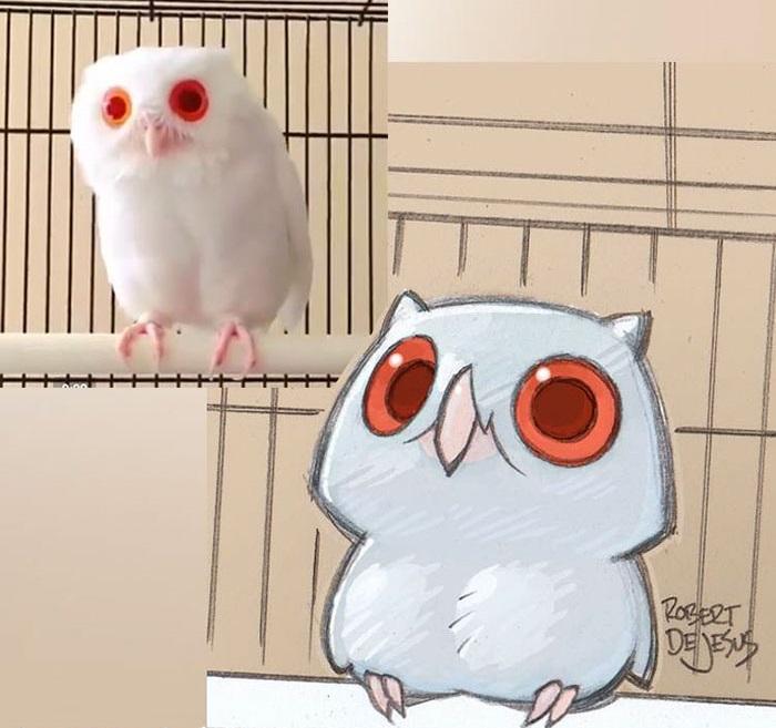 Крупные и красивые глаза – вот чем многих привлекает эта хищница.