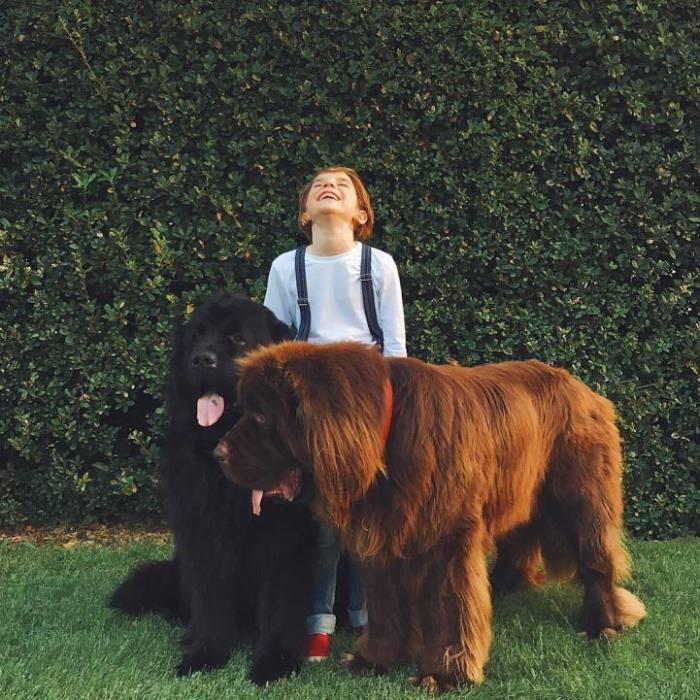 Джулиан с псами Брюсом и Максом.
