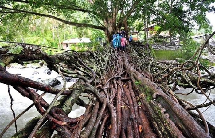 Мост Жембатан Акар в Индонезии является жизненно важным звеном между двумя маленькими деревушками.