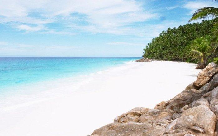 Здесь можно отдохнуть от повседневной жизни и забыть обо всем,  поскольку тропическая атмосфера острова Фрегат действительно уникальна.