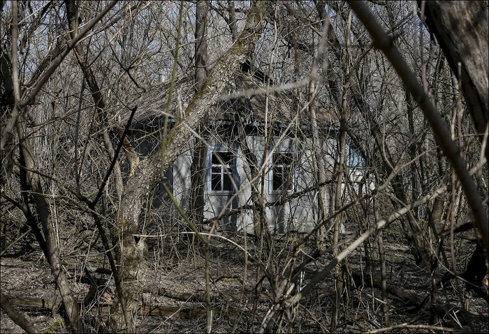 Заброшенный дом, вблизи Чернобыльской АЭС.