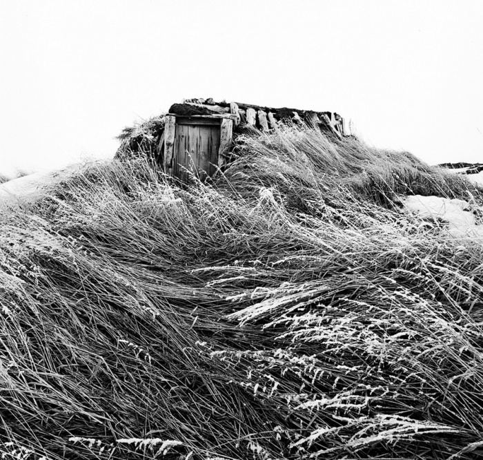 Деревянная землянка заросшая травой. Юкон, Аляска, апрель 1975 год.
