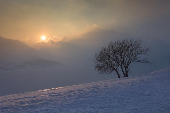 Нежная красота бледного солнца, освещающего берег замерзшего озера на высоте 2083 метра над уровнем моря.