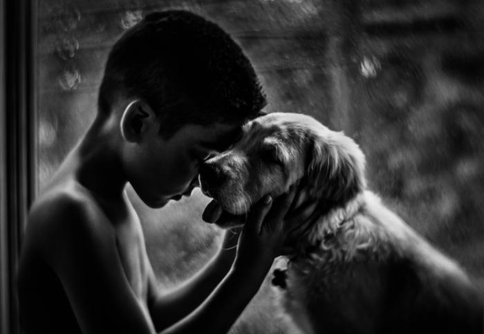 Трепетные отношения между мальчиком и любимым псом.